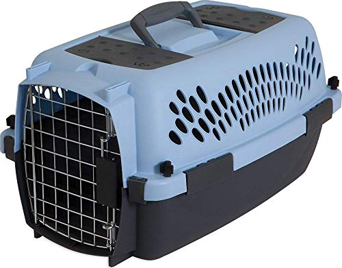 Aspen Pet Porter Heavy-Duty Pet Carrier with Secure Lock, 9 Sizes, 13 Colors by Petmate