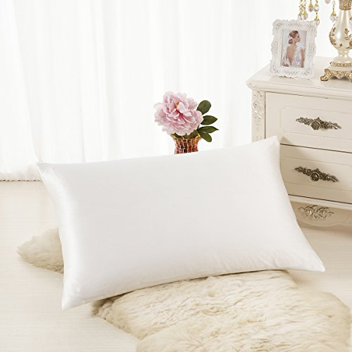 ALASKA BEAR Luxurious 25 momme Silk Pillowcase, 100% Mulberry Silk Pillow Cover, (Slip Wrinkle Free Cap)