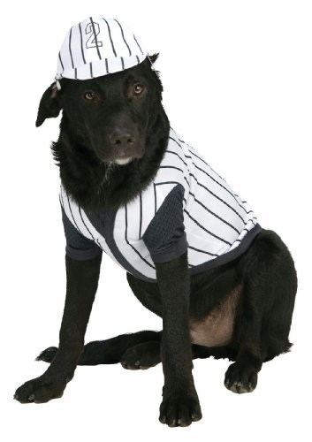 Baseball Themed Halloween Costumes (Rubie's Baseball Player Pet Costume, Large)
