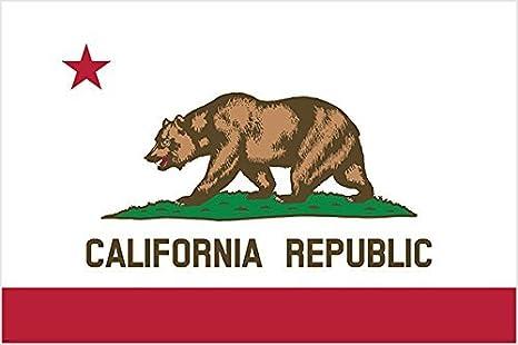 Amazon.com: California Republic oso y Star Cartel Oficial ...