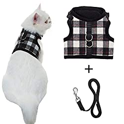 Escape Proof Cat Harness with Leash - Adjustable Soft Mesh - Best for Walking