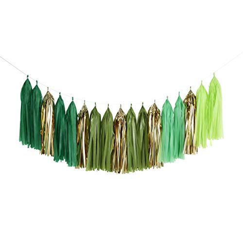 Fonder Mols Tassel Garland Tissue Paper Tassel Banner DIY Kit Balloon Tassel Set for Lulu Tropical Summer Party Decoration, Aloha Bridal Shower, Forest Hills Jungle Themed Party & Events Decor A14