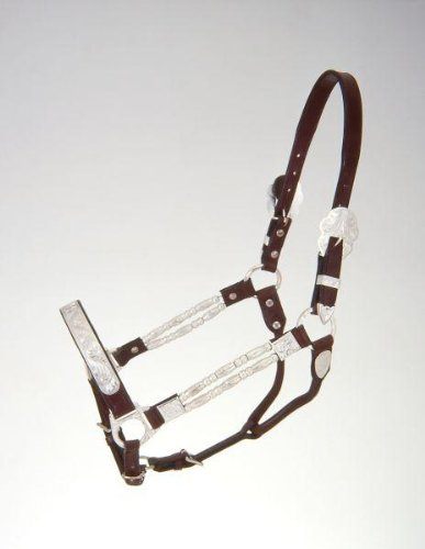Tough 1 Royal King Silver Ferrules Show Halter, Yearling, Dark Oil