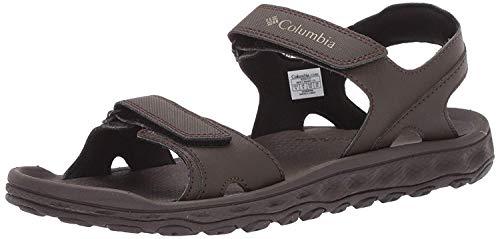 Columbia Men's Buxton 2 Strap Sport Sandal, Cordovan, Pebble, 8 Regular US