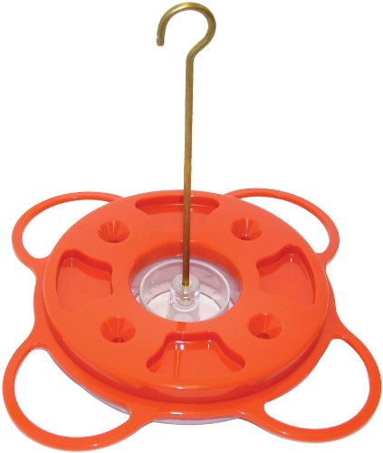 Birds Choice 1009 Oriole-Fest Oriole Feeder, 12-Ounce, Orange