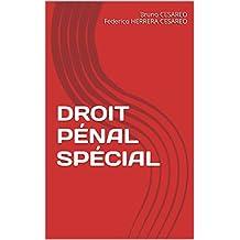 DROIT PÉNAL SPÉCIAL (French Edition)
