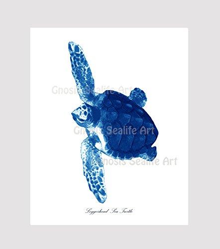 Blue Sea Turtles Decor Art Prints Set Of 4 Unframed Beach