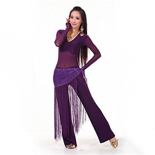 SNW Professional Belly Dance Costume Set 3 Pcs Belly Dance Long Sleeves Top/Pants/Hip Scarf Wrap Belt Dance Costumes Stage Performance Party Dance Clothing Sportswear Dance Costumes Practice Costume as a gift (Dance Costumes Performance Wear)