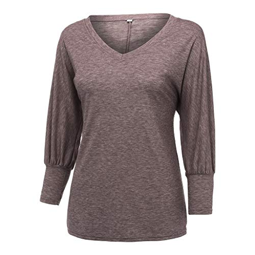 Toimothcn Woman Loose Tunic Tops Casual Solid V-Neck Stretch Sleeve Plus Size T Shirt(Brown,XXXXL) ()