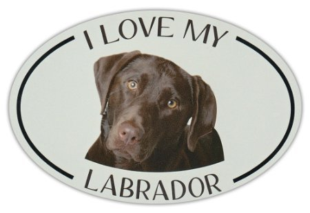 oval-dog-breed-picture-car-sticker-i-love-my-labrador-chocolate-lab