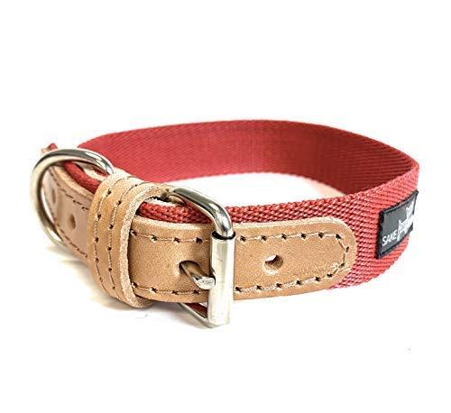 Sake Pet Nylon & Leather Dog Collar with Dog Tag and Fun Paw Print Design, Adjustable Collar, Ruby Red, Small