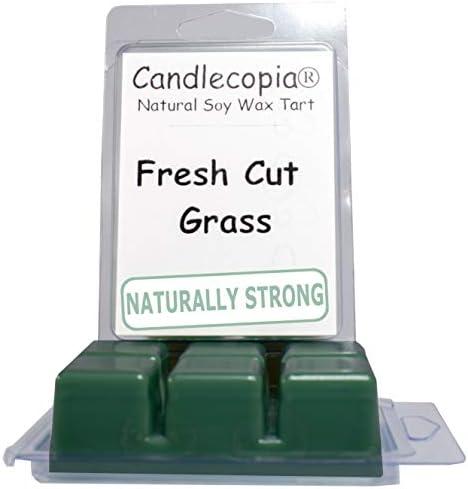 Fresh Cut Grass 1 oz Wax Melt