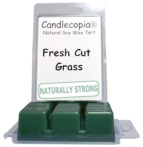 Candlecopia Fresh Cut Grass Strongly Scented Hand Poured Vegan Wax Melts, 12 Scented Wax Cubes, 6.4 Ounces in 2 x 6-Packs