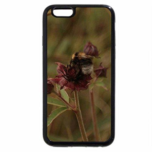 iPhone 6S / iPhone 6 Case (Black) bumblebee