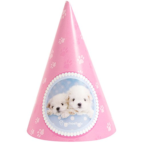 BirthdayExpress Glamour Dogs Cone Hats by Rachael Hale (8)