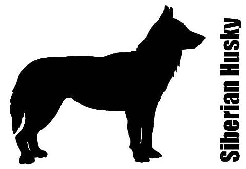 Siberian Husky 2 pcs 3-1/2