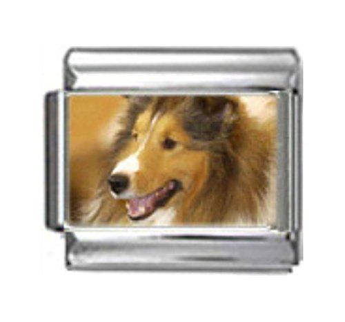 Stylysh Charms Collie Dog Photo Italian 9mm Link DG161