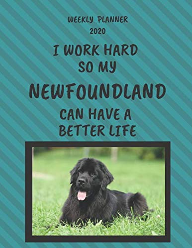 Newfoundland-Weekly-Planner-2020-Newfoundland-Lover-Gifts-Idea-For-Men-Women-Funny-Weekly-Planner-I-Work-Hard-So-My-Newfoundland-Can-Have-A-Better-Life-With-To-Do-List-Notes-Sections