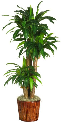 Nearly Natural 6584-05 Dracena with Basket Decorative Silk Plant, 62-Inch, Green