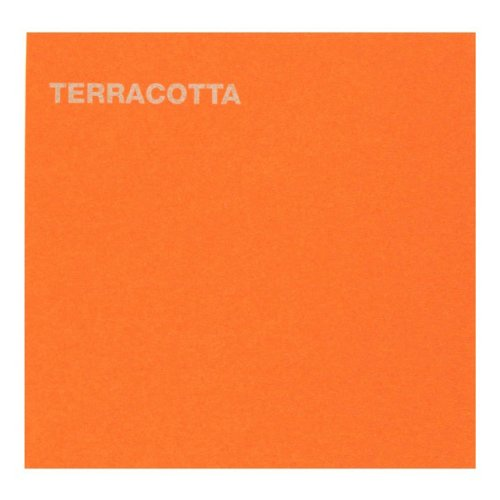 Daler-Rowney Canford Cardstock Paper, 20.5 X 30.5 inches, Matte, Terracotta ()
