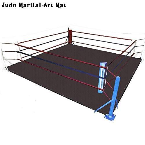 Celebrita Wrestling Boxing MMA Ring Floor Canvas Mat/Exercise, Gymnastic & Judo Martial Art Mat - NO Ring Included