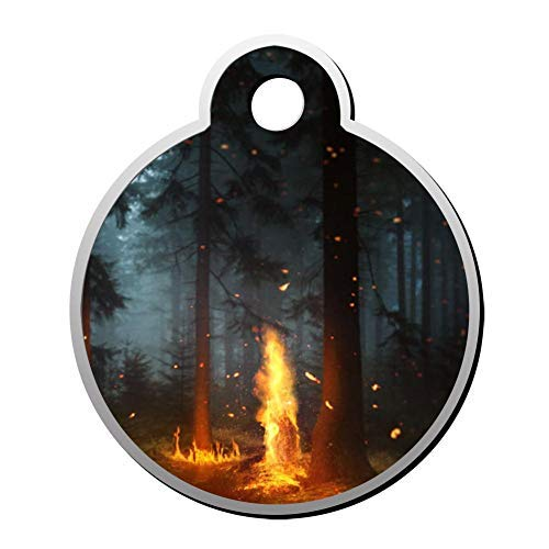 Fire Spirit Pet Id Tags Personalised Stainless Steel Double Sided for Dogs Cats Funny Idea -