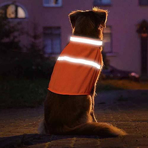 Vizpet Dog Reflective Vest and Hunting Lightweight Vest with Adjustable Strap - High Visibility for Walking, Jogging, Training (Orange, Medium) ()