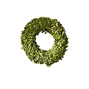 Preserved Boxwood 16 Inch Wreath 103
