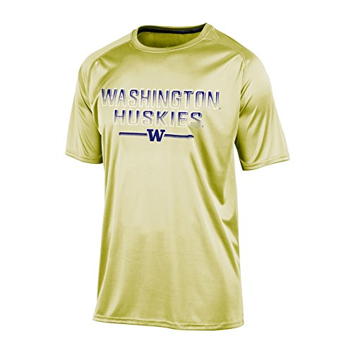 Champion (CHAFK) NCAA Washington Huskies Men's Short sleeve Crew Neck RA Tee, Large, Gold - Washington Huskies Ncaa Tee