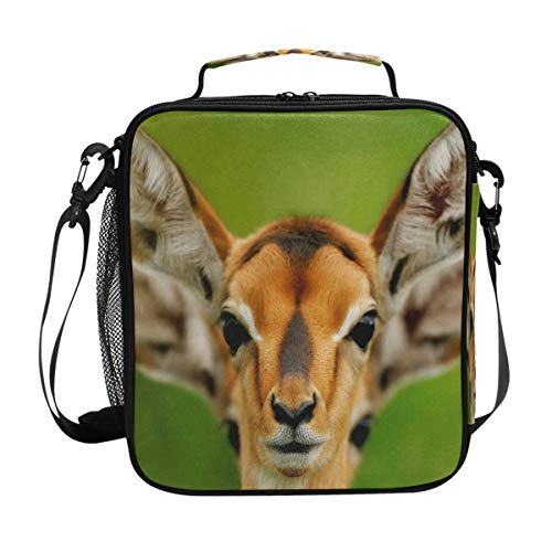 df845de0433f Eared Deer Wildlife Funny Animals Lunch Bag Womens Insulated Lunch Tote  Containers Zipper Square Lunch Box for Kids Men