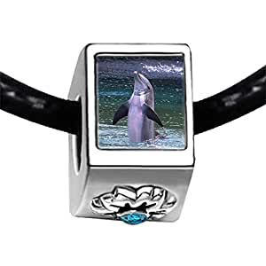 Chicforest Silver Plated Happy Cute Dolphin Photo Blue Zircon Crystal December Birthstone Flower Charm Beads Fits Pandora Bracelets