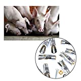 """BUYGOO [10Pcs] 1/2"""" NPT Stainless Steel Automatic"""