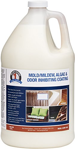One Shot BGMI-128G  Mold, Mildew, Algae, and Fungus Prevention, 128 oz (1 Gallon) - One Shot Rinse