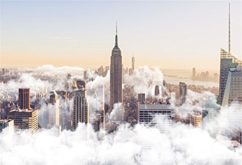 AOFOTO 7x5ft Empire State Building Backdrops American Urban Photo Shoot Background New York Bird's-eye View Photography Studio Props Adult Artistic Portrait Modern City Travel Wallpaper Video Drop (Shot Hot Air 6')