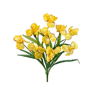 "22"" Iris Bush x9 Yellow (Pack of 12) 42"
