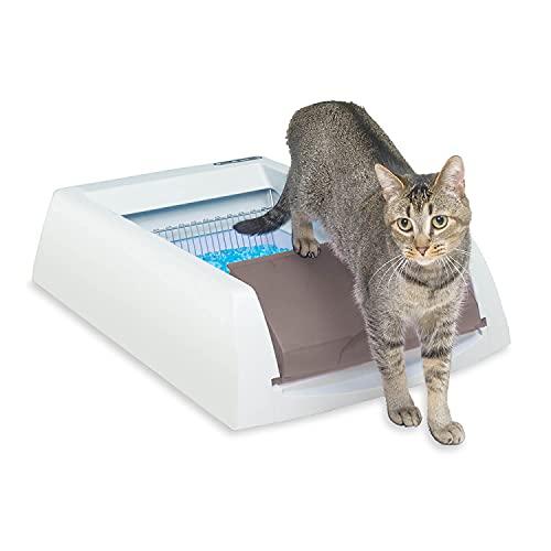 PetSafe PAL19-14657 Caja de Arena autolimpiante para Gatos ScoopFree Original