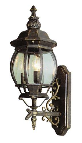 Trans Globe Lighting 4051 BK Outdoor Francisco 25