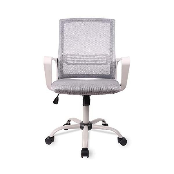 Smugdesk Extra Large Mid Back Breathable Mesh Office Desk Computer Desk Chair with...