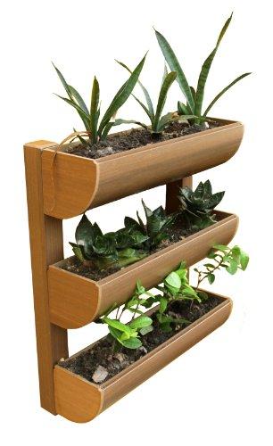 Dc America City Garden CG-WP-200724-T Mini Wall Planter, ...