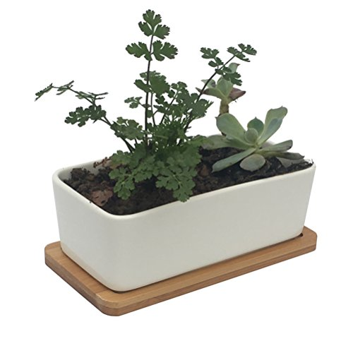 Vtete 6.5 Inch Ceramic Succulent Planter Pot with Bamboo Tray ( Not Includes Plants) ~ Rectangular White Window Plant Container Box