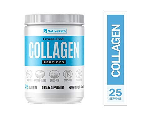 NativePath Collagen Protein Powder - Pure Grass-Fed Beef Collagen, Non GMO, Gluten Free, Dairy Free, Certified Paleo Friendly, Supports Healthy Skin, Joints, and Hair (28 Servings per Bottle)