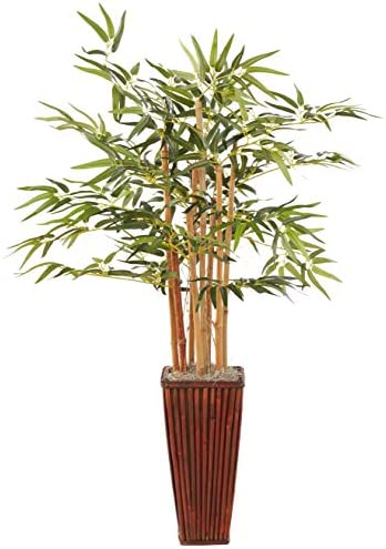 Bamboo Decorative Planter Arrangement FREE Shipping