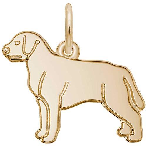 - Rembrandt Charms Labrador Retriever Charm, Gold Plated Silver