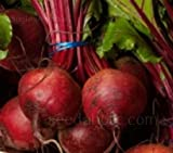 buy Beet Detroit Dark Red Heirloom, Container Friendly, 59 Days to Harvest, 100 Seeds now, new 2019-2018 bestseller, review and Photo, best price $4.99