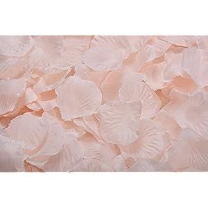 ocharzy 1000pcs Silk Rose Petals Wedding Flower Decoration (Champagne) 13