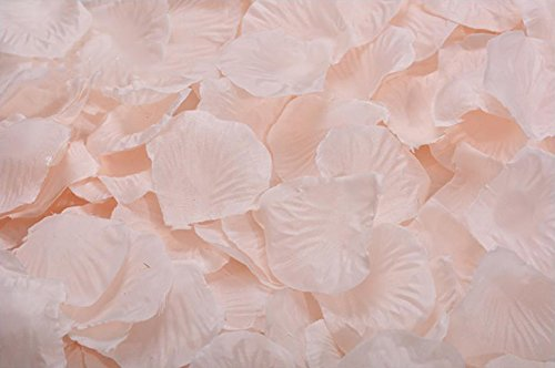 (ocharzy 1000pcs Silk Rose Petals Wedding Flower Decoration (Champagne))