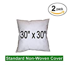 "Pillow Inserts - Polyester Filled - Regular Shell, 30x30"" (Twin Pack)"