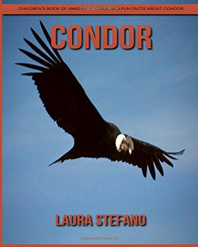 Condor: Children's Book of Amazing Photos and Fun Facts about Condor ebook