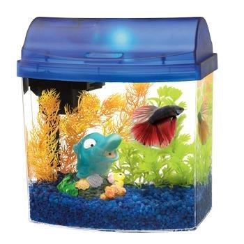 Mini Bow Desktop Aquarium Kit - 1 Gallon