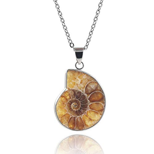 Natural Ammonite Pendant Necklace Fibonacci product image